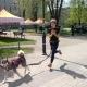 Stalowa Wola: Stalowowolski piknik dla miłośników psów