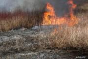 13-letni chłopiec bawiąc się zapałkami podpalił trawę na nieużytkach w Lipie w gminie Zaklików. Na szczęście w pobliżu nie było żadnych budynków i nikt nie ucierpiał.