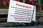 Na placu przed dworcem PKS w Stalowej Woli stanęła sześciometrowa platforma. Instalacja Liść demokracji jeździ po Polsce od 4 listopada 2017 roku w ramach akcji Gąsienica Tour.