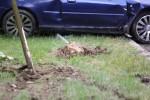 Auto zostało unieruchomione na pasie zieleni a 21-letni kierowca wyszedł z niego bez szwanku.