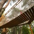 Stalowa Wola: Otwarcie parku linowego w Stalowej Woli