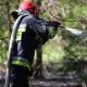 Stalowa Wola: Pożar na granicy powiatów. Na miejscu 8 wozów bojowych