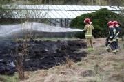 Spaleniu uległo około 5 arów traw. Obecnie właścicielem terenów po szklarniach jest gmina.