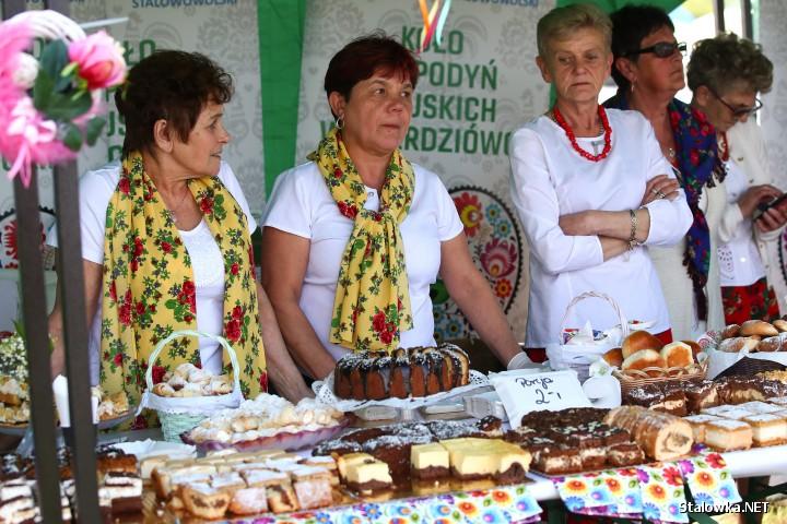 Dni Otwarte Unii Europejskiej w Stalowej Woli.