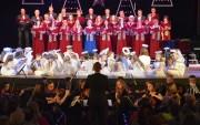 Stalowa Orkiestra oraz Chór Kameralny Miejskiego Domu Kultury od kilku lat współpracują ze sobą. W styczniu tego roku zdobyli srebrny dyplom na VI Rzeszowskim Festiwalu Kolęd i Pastorałek o charakterze międzynarodowym.