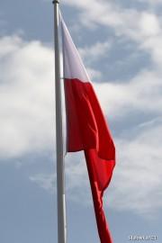 Apel jest odpowiedzią na próby fałszowania historii płynące z Rosji, które mają stawiać Polskę w niekorzystnym świetle, m.in. w kontekście rzekomej współpracy z nazistami czy antysemityzmem.