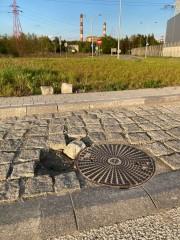 Nie mają szczęścia ronda na terenie Stalowowolskiej Strefy Gospodarczej. Po raz kolejny otrzymaliśmy sygnał od mieszkańca o rozjechanych kostkach i wyrwach.