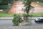 Na ulicy Skoczyńskiego drzewo runęło na ulicę, blokując przejazd.