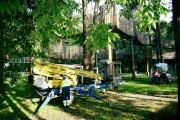 W Parku Miejskim w Stalowej Woli prowadzone są prace polegające na przycince uchych i niebezpiecznie zwisających gałęzi drzew.