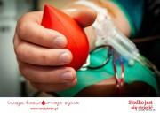 Dawcą krwi może zostać każdy zdrowy człowiek w wieku od 18 - 65 lat.