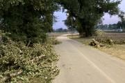 Na zrewitalizowanych nadsańskich błoniach w Stalowej Woli nad szlakiem pieszo-rowerowym runęła duża gałąź.