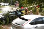 Po nawałnicy brzoza runęła na auto, uszkadzając pojazd i blokując przejazd drogą.