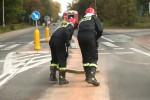 W działaniach strażacy zużyli 260 kilogramów sorbentu. Do jego zabrania zużyto zamiatarkę MZK.