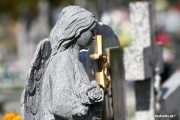 Rozwadowska nekropolia będzie celem kolejnej regionalnej wycieczki organizowanej przez Muzeum Regionalne w Stalowej Woli.