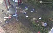 Ptactwo rozrzuca śmieci w poszukiwaniu pożywienia.
