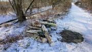 Na razie wygląda na to, że usuwane są drzewa nadgryzione przez bobry, a właściwa wycinka drzew jeszcze nie ruszyła.