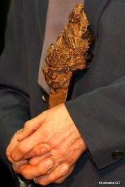 Do 10 marca trwa nabór wniosków o przyznanie miejskiej nagrody w dziedzinie kultury pod nazwą Gałązka Sosny.