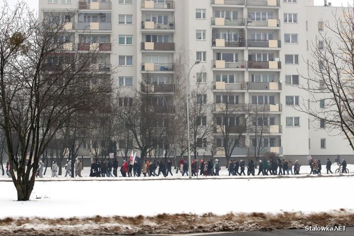 Marsz o Wolność i Marsz Niewolników w Stalowej Woli.