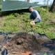 Stalowa Wola: Mrówki nie kwapią się z przenosinami w inne miejsce