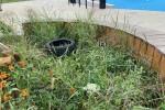 Monitoring miałby zostać zainstalowany jeszcze w tym roku. Mimo że Podwórko dla Pława otwarto w maju tego roku, powoli przestaje przypominać miejsce z początków swojego istnienia.