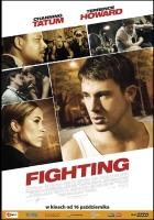 Plakat: Fighting