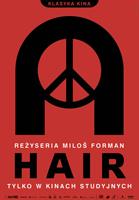 Plakat: Hair
