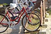 Jeden z mieszkańców zaproponował, aby w mieście rowerów powstała ich bezobsługowa wypożyczalnia.