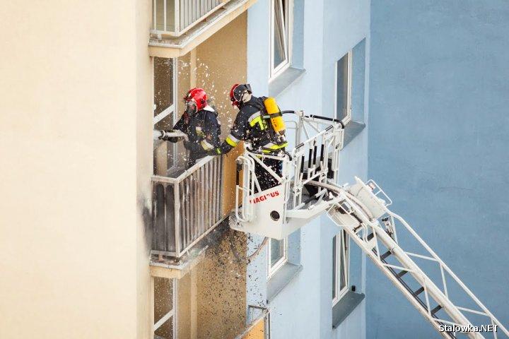 W momencie zdarzenia w mieszkaniu nie było żadnych osób. Przyczyną pożaru był prawdopodobnie pozostawiony niedopałek papierosa lub ewentualne podrzucenie go z piętra wyżej.