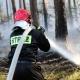 Stalowa Wola: Spaliło się 2 hektary lasu w Nadleśnictwie Rozwadów