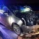 Stalowa Wola: Auto wjechało w 200 kg łanię